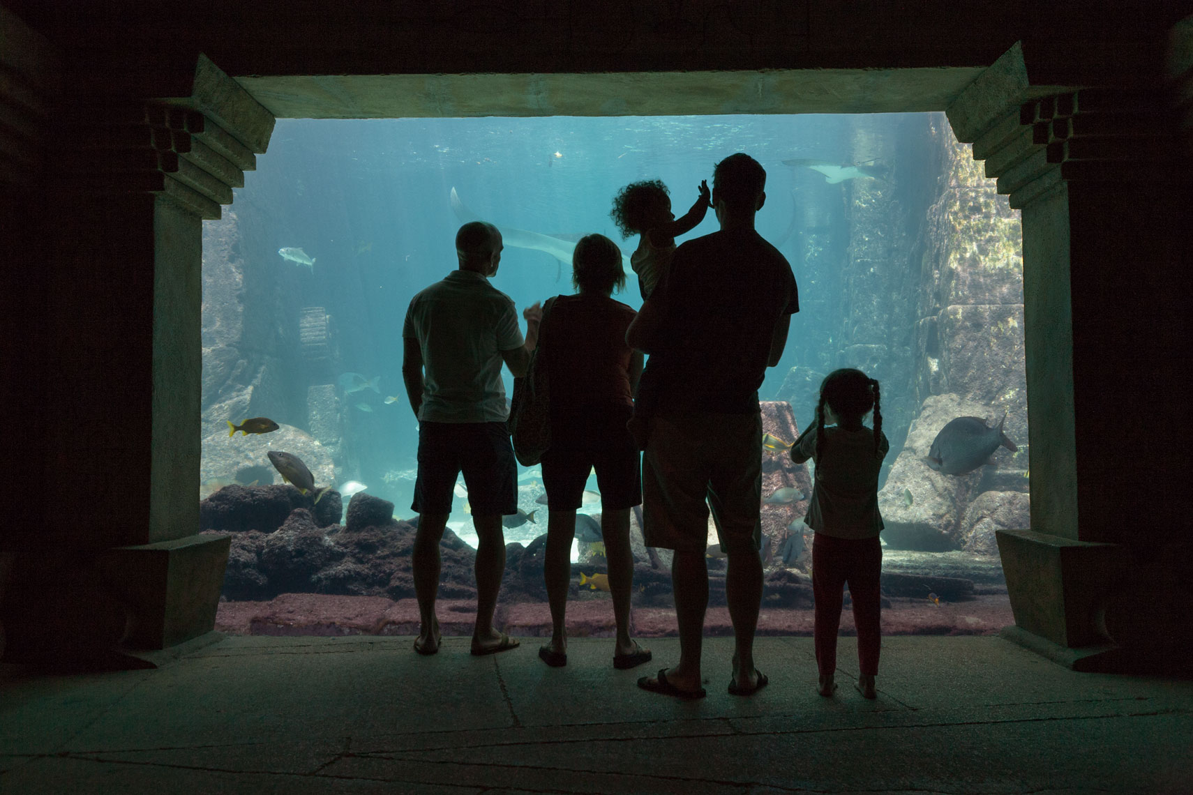AquariumFamily.jpg